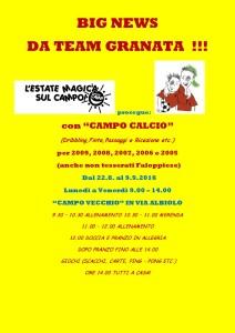 Bozza Iscrizione Campo Calcio-page-001 (1)