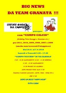Copertina Iscrizione Campo Calcio 2018